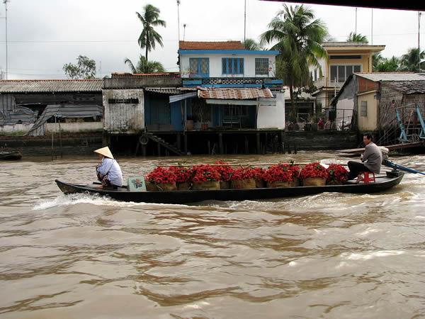 vietnam-cai-be