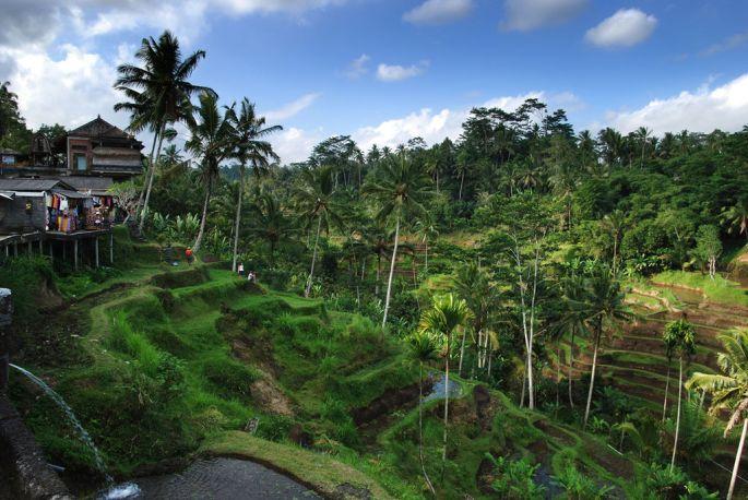Croisière en Indonésie Découvrir Bali et les petites îles de la Sonde 1